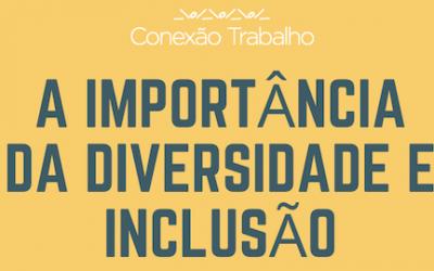 Infográfico Diversidade e Inclusão